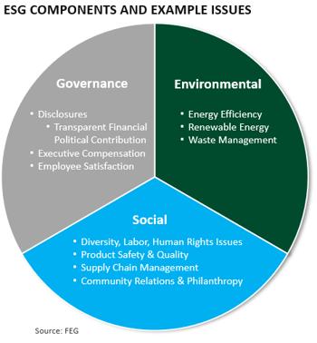 ESG Issues