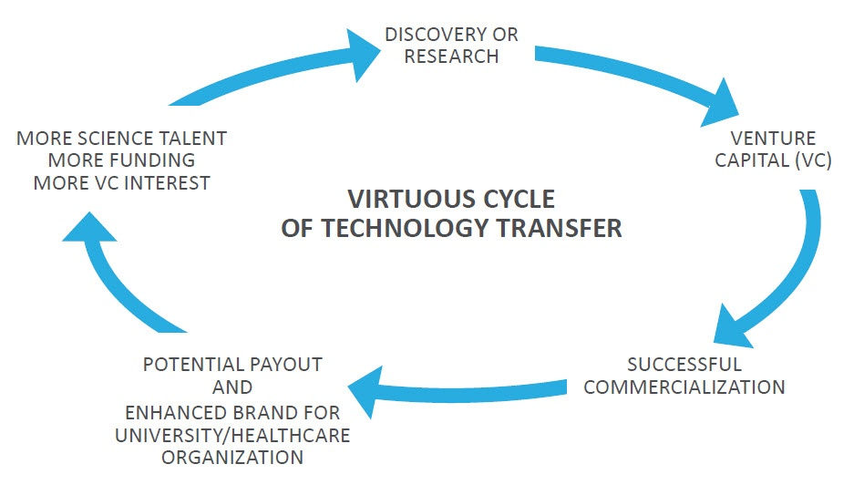Virtuous cycle graphic.jpg